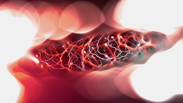 neural impulses